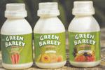 Green Barley Food Juice